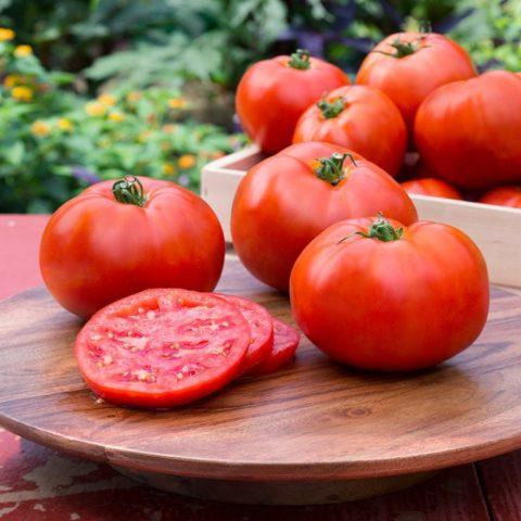 Чем подкормить помидоры после высадки в теплицу – выбираем с умом