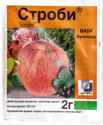Препарат Строби: инструкция по эффективному применению для винограда + отзывы