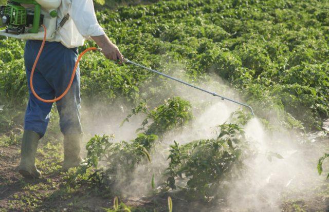 Средство Лазурит от сорняков – спасение для растений