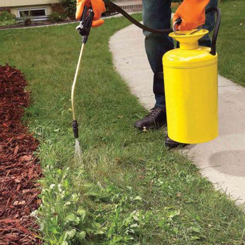 Гербицид Глифос: секреты применения для успешной борьбы с сорняками