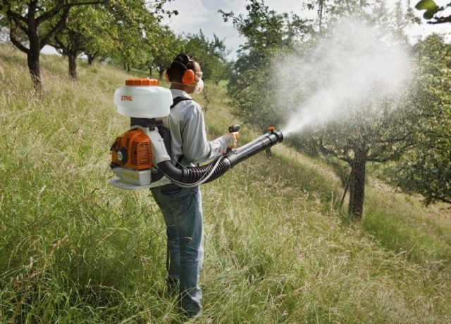 Гербицид Глидер – эффективное уничтожение всех видов сорняков