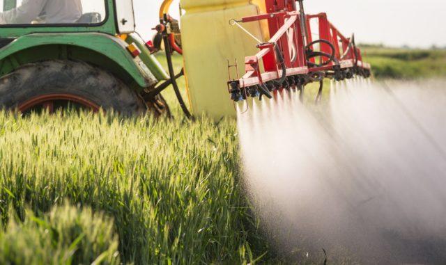Фунгицид Амистар Экстра: защита яровых и озимых зерновых культур от болезней