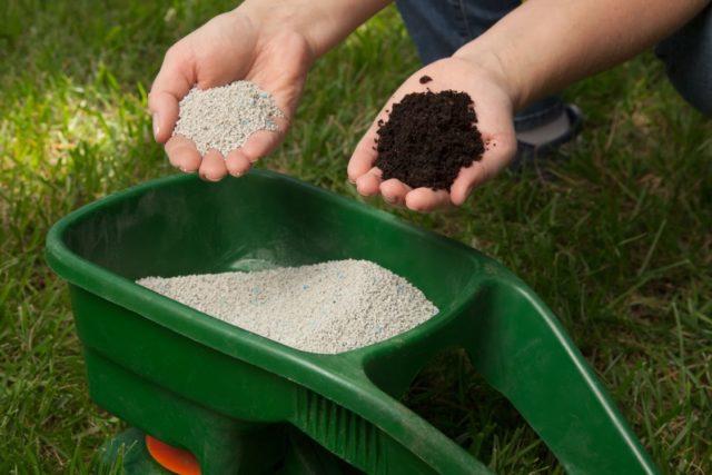 Удобрение из травы и сорняков: доступные и эффективные рецепты зеленой подкормки