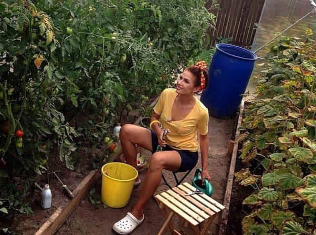 Что выращивает на своем огороде Эвелина Бледанс