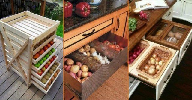 Корнеплоды для хранения на зиму: советы