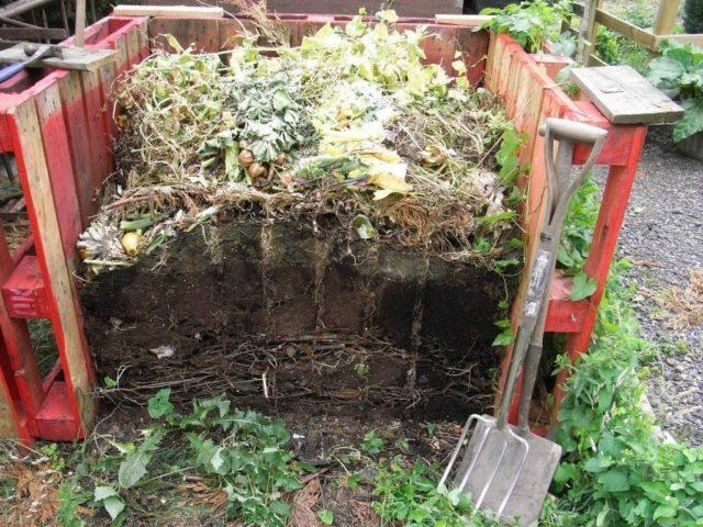 Правильный компост – хороший урожай без лишних затрат
