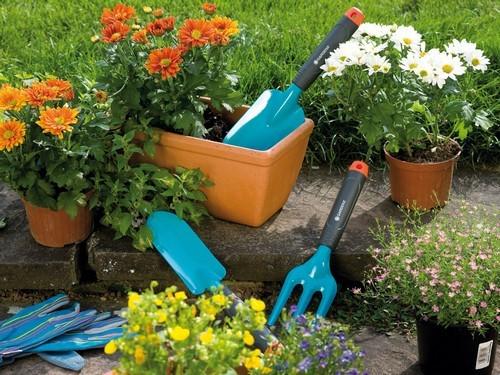 Инструменты садовода, которые можно заменить подручными предметами