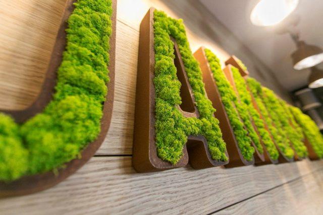 Что такое стабилизированный мох и как озеленить им стены