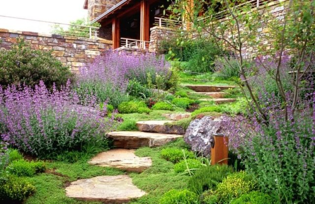 Как оформить сад на склоне