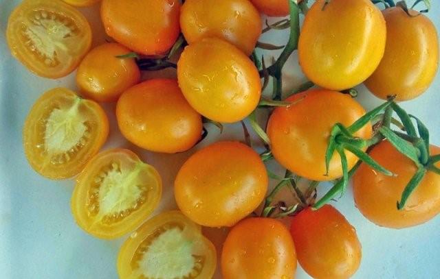 Томаты, подходящие для вяления: несколько разноцветных сортов