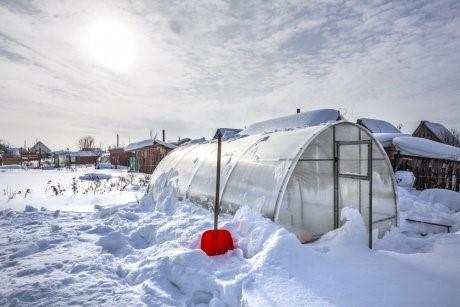 Нужен ли снег в теплице зимой