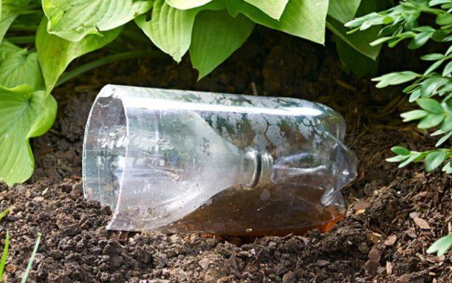 Зачем копить пластиковые бутылки перед садовым сезоном