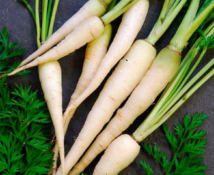8 сортов разноцветной моркови