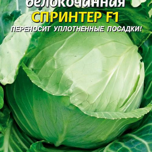 Сорта ранней капусты, которые отличаются неприхотливостью