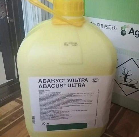 Фунгицид Абакус Ультра: инструкция и способы обработки культур от грибных заболеваний