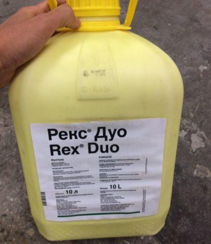 Фунгицид Рекс Дуо: особенности и эффективность препарата для злаковых культур и свеклы