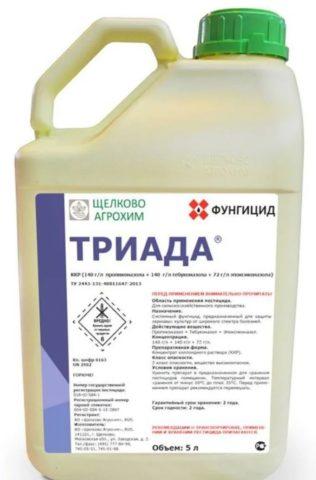 Фунгицид Триада: инструкция по применению и защитные свойства препарата