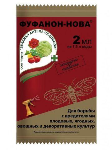 Чем обработать огурцы от белокрылки в теплице и в открытом грунте