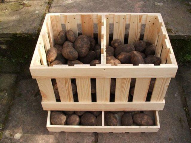 Как правильно хранить картошку зимой: в погребе, подвале, подполе