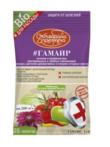 Кладоспориоз (бурая пятнистость) томатов в теплице: лечение, фото, меры борьбы, профилактика