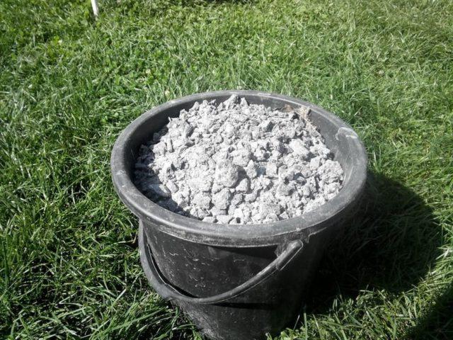 Подкормка садовой и домашней гортензии удобрениями осенью